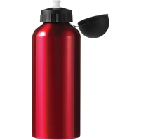 Aluminium drinking bottle (650ml)